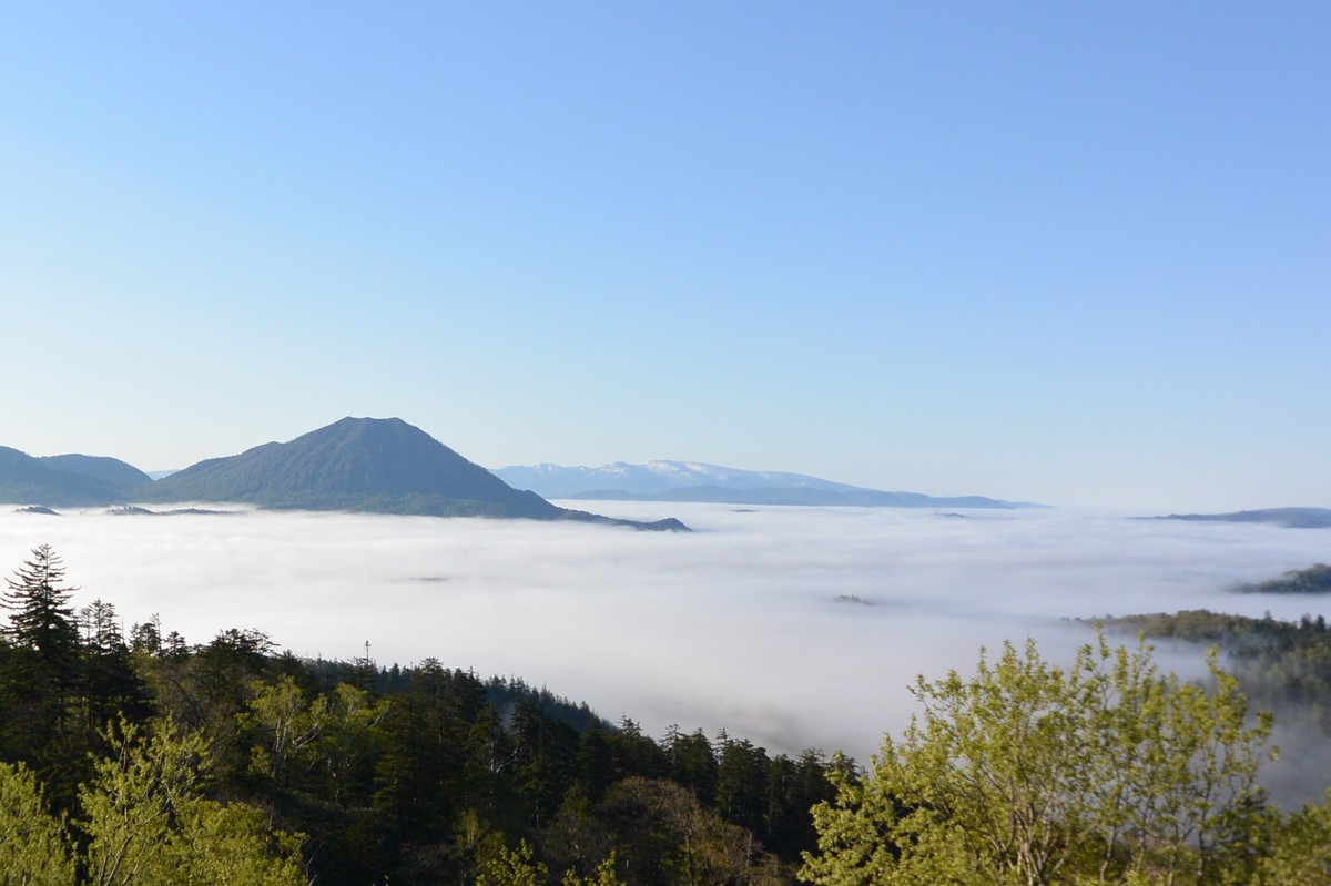 知駒峠から見た雲海