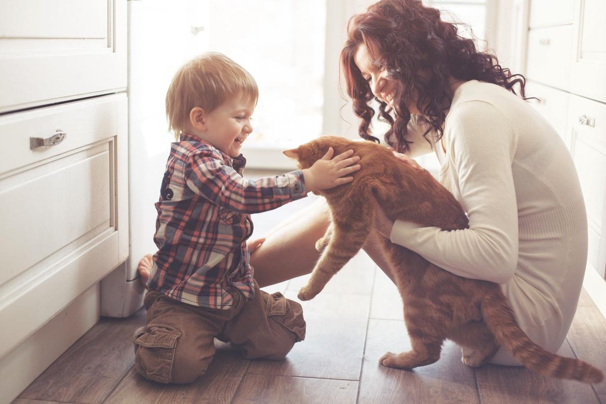 猫は人間をどう思ってる?猫が懐く人の特徴や愛の確かめ方など